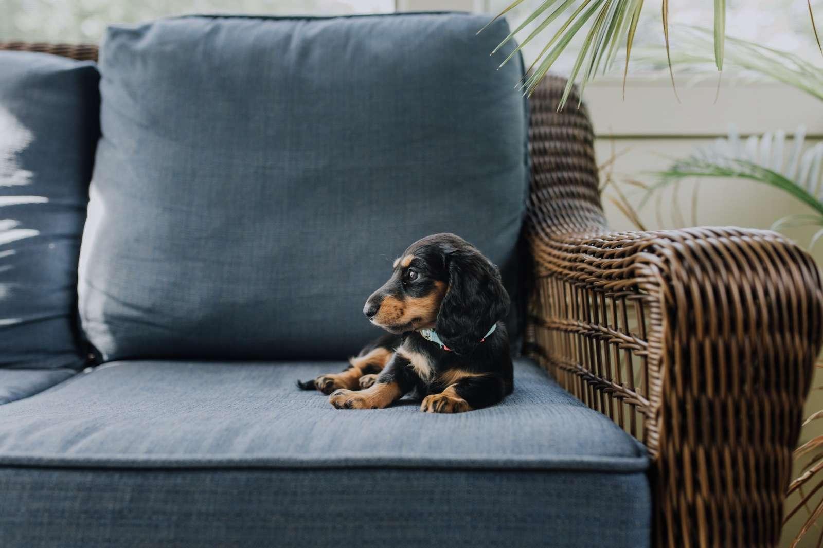 Col divano giusto, spazio al relax
